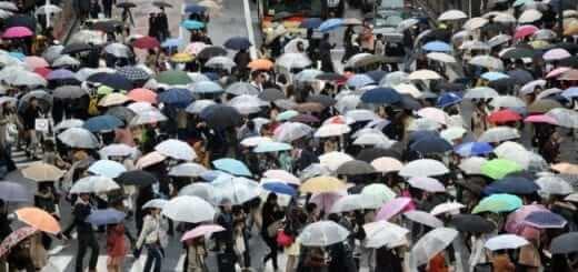 Hiệu ứng người qua đường (Bystander Effect)