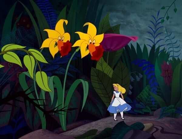 Hội chứng Alice ở Xứ sở thần tiên1