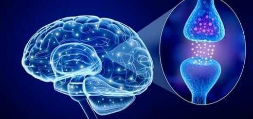 Hormone Serotonin & Hội Chứng Serotonin Tác Đông Lên Cơ Thể Người