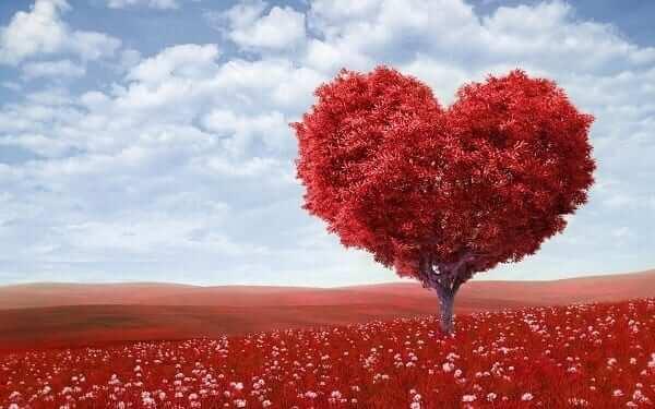 """7 sự thật """"đau lòng"""" khi nghiên cứu tâm lý học tình yêu"""