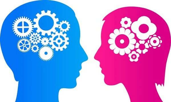 Các Tâm Lý Học Hành Vi Về Nhân Cách Phổ Biến Trên Thế Giới